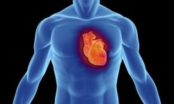 Morte súbita cardíaca acomete cada vez mais indivíduos em idade produtiva