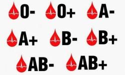 Pesquisa mostra que 40% dos brasileiros não sabem o próprio tipo sanguíneo